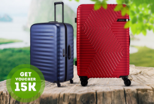 Luggage Payday Surprise Disc. Up To 80%
