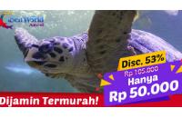 Diskon Tiket Seaworld Ancol di Lakupon